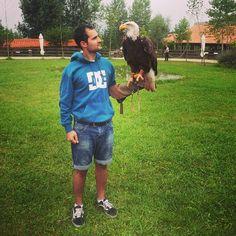 #conmiaguila #cabarceno #parquenatural #averapaz #avesrapaces #cetreria #aguilaimperial #aguilareal #aguila #yo #ave #santander #cantabria #españa #increible #avepreciosa #peroquepasa?