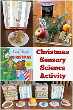 Wonderful Christmas sensory activity + science experiment for preschool, kindergarten and elementary ages!  Read the Sweet Smell of Christmas and then set up sensory boxes to see if kids can identify the various holiday scents.