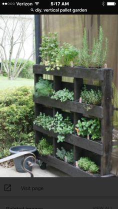 Monochrome herbal vertical pallet garden