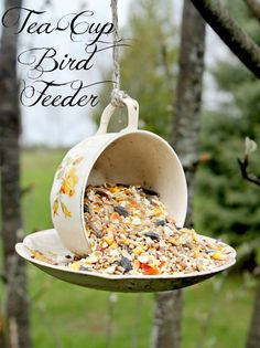 Teacup bird feeder made from a vintage cup and saucer glued together and hung from a string.  What a sweet idea!