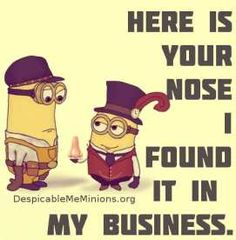 rofl!! need to buy me a plastic nose NOW!!