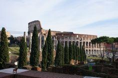 Feeling of balcony.seeing sky and trees Balcony, Rome, New York Skyline, Trees, Balconies, Tree Structure, Rum, Wood, Rome Italy