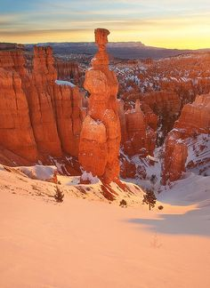 Thor's Hammer ~ Bryce Canyon National Park, Utah ~ Photo by. Bryce Canyon, Canyon Utah, Thors Hammer, Us National Parks, Ciel, State Parks, Places To See, Monument Valley, Beautiful Places