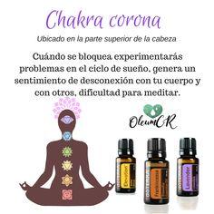 Balancea tu chakra corona con los aceites Elevation, Incienso y Lavanda doTERRA. #OleumCostaRica #AceitesEsenciales #DoTerra #Salud #Bienestar #Yoga