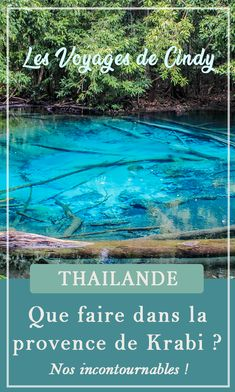 In this post you will find some useful information about the beautiful country of Thailand. Enjoy the read and enjoy your trip in Thailand. Bangkok Guide, French Lifestyle, The Beautiful Country, Blog Voyage, Mauritius, Phuket, Thailand Travel, Things To Know, All Over The World