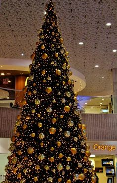 Christmas Tree Vienna Shopping Mall