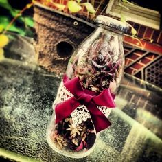 I decided to reuse a Snapple Bottle for a cute little house decoration! Snapple Bottle Crafts, Diy Bottle, Crafts For Teens, Arts And Crafts, Teen Crafts, Cute Little Houses, Christmas Bulbs, Christmas Gifts, Wine Parties