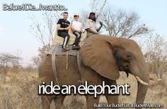 Before I die, I want to...Ride an Elephant