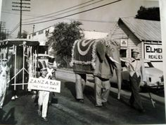 Springville PTA sponsored this Big Top Parade in 1956. George Oaks' dad made the elephant and Betsy Walker is carrying the Zanzabar sign. There's Elmer Cole's old State Farm office...slj