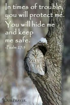 Fathet God, we ask that you cover us with your hand of protection. You alone are our shelter and rock in times of trouble