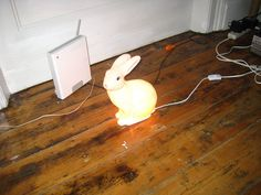 Bunny Light by patroc, via Flickr