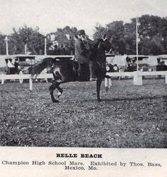 Tom Bass competing on Belle Beach at the 1916 Chicago International Live Stock Exposition where they won the High School Horse class