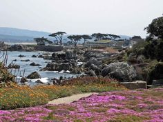 Carmel By the Sea, California.  Did the 7 mile bike ride many times with my family when I was little. Very pretty area.