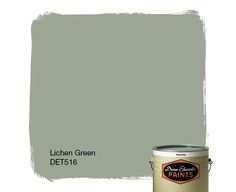 Dunn-Edwards Paints paint color: Lichen Green DET516   Click for a free color sample #DunnEdwards