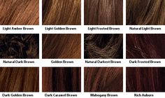Brown Hair Color Chart Red Shades Dark