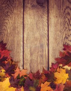 Autumn leaves border against wood background. Autumn leaves border against woode ,