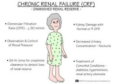 Renal Nursing Study Tips, Nursing Board, Diálisis Peritoneal, Med Surg Nursing, Ob Nursing, Nursing Math, Nursing Degree, Rn School, School Humor
