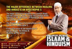 Pantheism, Islamic Teachings, Hindus, Muslim, Philosophy, Believe, Religion, The Unit, God