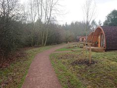 GLAMPING | A Weekend Of Glamping at Whitemead Forest Park