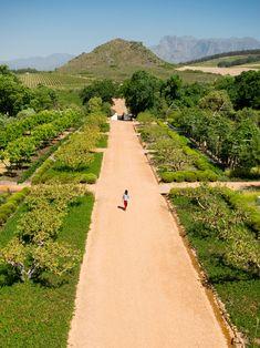 Fabulous farm hotel! Babylonstoren Hotel, Cape Winelands, South Africa http://www.swtravel.co.za/