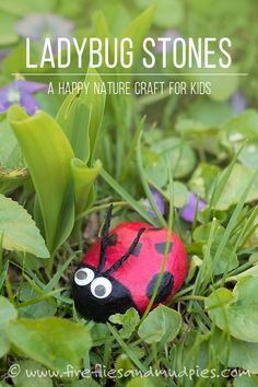 Kids will love making whimsical bugs out of ordinary garden stones! | Fireflies and Mud Pies #easykidscrafts #funkidscraft