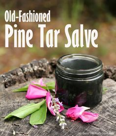 """Old fashioned pine tar salve ~ """"Dab a small amount on a bug bite, splinter, boil or other skin irritation. Cover with a bandage for several hours or overnight. Wash off and repeat as necessary."""""""