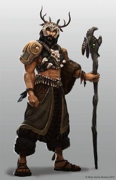 Should the Shaman be a class of it's own? : DungeonsAndDragons