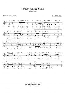 Her Sey Seninle Guzel Kolay Notasi Flut Keman Notalara Dokulmus Muzik