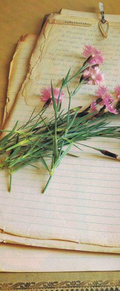 Flower Files | Trouvais