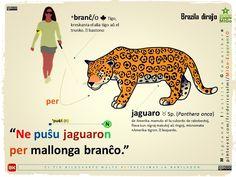 #migo #esperanto #gramatiko #puŝi #jaguaro #onca #leopardo #longa #prepozicio #akuzativo #n-finaĵo #transitiva #besto #naturo #medio #branĉo #arbo #tigo New World Order, Language, Fictional Characters, Learning, Languages, Health, Studying, Speech And Language, Teaching
