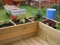 Veggie plot in raised beds