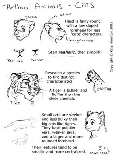 drawing anthropomorphic animals | These are old but should give you some idea how I approach different ...