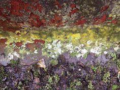 Rust on bridge Rust, Bridge, Knitting, Tricot, Breien, Bridges, Stricken, Weaving, Bro