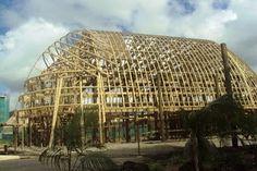 Building a fale at Samoa.