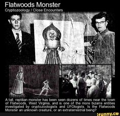 """Flatwoods Monster Cryptozoology / Close Encounters M, x. """""""""""" A tall, reptilian monster has been seen dozens of times near the town of Flatwoods, West Virginia, and is one of the more bizarre entities investigated by cryptozoologists and UFOIogists. Scary Creepy Stories, Creepy Facts, Creepy Things, Ghost Stories, Weird Creatures, Mythical Creatures, Flatwood Monster, Project Blue Book, Myths & Monsters"""
