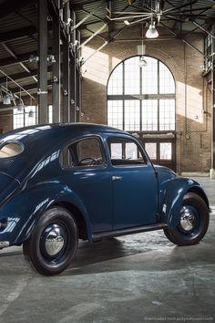 Beetle blue / blauwe kever