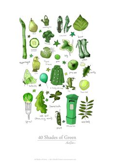 40 Shades of Green | Mandi Cromer #illustration