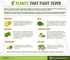 Fight a fever naturally with elberberry, basil, oregano & marjoram, pineapple and linden flower..