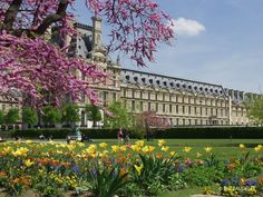 The Tuileries and its Gardens