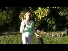 Osteoporosis Exercises for the Hip: The Heel Lift & Jump proven to increase bone density in the hips and overall 5 min. Osteoporosis Exercises, Posture Fix, Bad Posture, Hip Workout, Workout Guide, Increase Bone Density, Leg Circles, Exercises