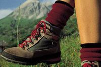 http://www.gridlon.com/de-bergsport-arlberg.htm  Wanderurlaub in Tirol.