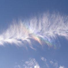 Rainbow Feather Cloud