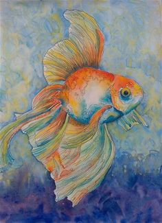 "Daily Paintworks - ""Chubby Goldfish"" - Original Fine Art for Sale - © Valri  Alexander Ary"