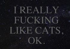 i like cats.