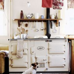 What if we are going through the 21st century, aren't this vintage stoves beautiful?
