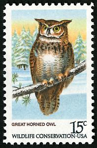 Great horned owl stamp. The 15-cent American Owls Series depicts four owls—a barred owl, a saw-whet owl, a great gray owl, and a great horned owl. It was first available on August 26, 1978, at Fairbanks, Arkansas. Frank J. Waslick designed the stamps.