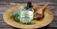 Incrível! Como fazer o óleo de babosa e usá-lo para tratar seus dentes, couro cabeludo, picadas dos insetos e dores - # #babosa