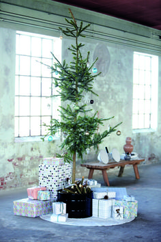 Charlie Brown Christmas Tree; my kids and I had one like this once.....they still talk about it!! :))