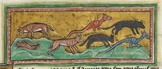 Animal detail from medieval illuminated manuscript  - British Library Royal MS 12 F XIII - c 1230-14th century - f44r