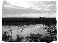 Early dawn over Pioneer dam at Mopani camp. Dawn, Camping, Mountains, Nature, Travel, Campsite, Naturaleza, Viajes, Destinations